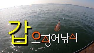 보령 갑오징어 주꾸미 선상낚시_회변항 오천바다낚시 재경…