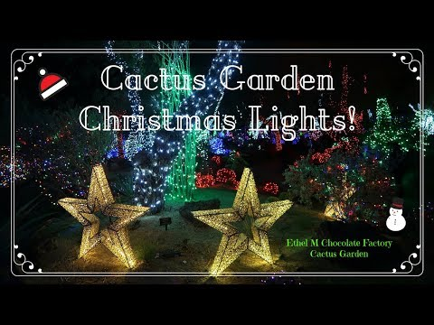 Ethel M Cactus Garden Christmas Lights! 2017