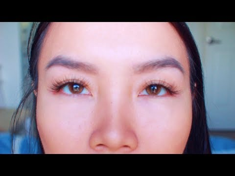 Solotica Ocre Dupe O Lens Russian Velvet Brown