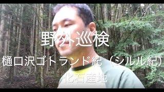 【ジオ動画】樋口沢ゴトランド紀(シルル紀)化石産地を歩く