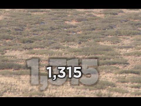 Long Range Hunting - 54 KILL SHOTS - Extreme Outer Limits TV