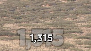 Long Range Hunting - 54 KILL SHOTS - Extreme Outer Limits TV