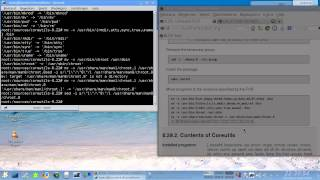 Linux From Scratch Tutorial Chapter 6.29 to 6.30 (Systemd RC1)