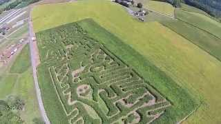 Butchers Fun Farm & Corn Maze (newport, Pa) - 2014 Preview