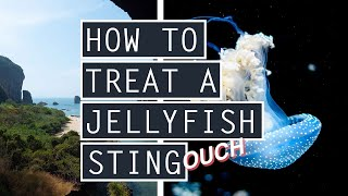 HOW TO TREAT A JELLYFISH STING // Best Hikes + Beaches in RAILAY // PART 2