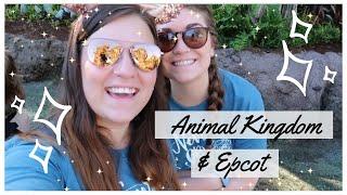 Disney World Vlog May 2019 | DAY 2 (Part 1) | Animal Kingdom & Epcot