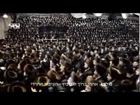 "BOBOV WEDDING! ""Highlights"" Of Bobover Rebbe Shlita 48 Daughters Chasina"
