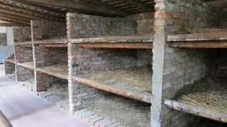 "Auschwitz concentration camp, ""beds"", Oswiecim, Auschwitz, Poland, Europe"