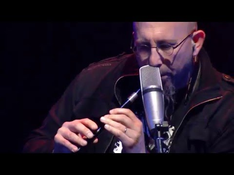 Dave Matthews Band Summer Tour Warm Up - The Dreaming Tree 7.8.15