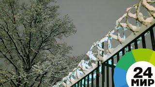 «Праведники мира»: как белорусы спасали евреев из Минского гетто - МИР 24