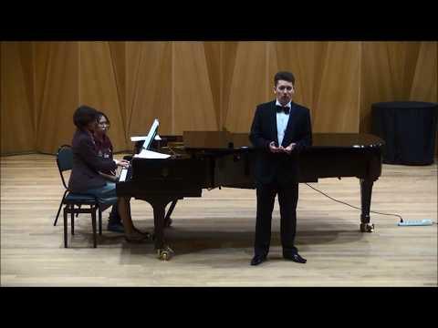 Die Rose, die Lilie, die Taube, die Sonne (Dichterliebe), Op. 48/3 - Schumann