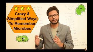 Mnemonics for Remembering Gram Positive & Gram Negative Organisms