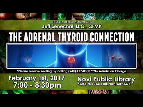 The Adrenal Thyroid Connection - Dr. Jeff Senechal