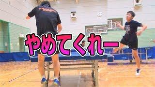 【卓球歴3年】衝撃のペンドラVSぐっちぃ【卓球知恵袋】Table Tennis