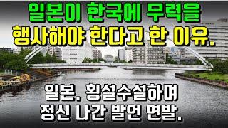 일본이 한국에 무력을 행사해야 한다고 한 이유. 일본. 횡설수설하며 정신 나간 발언 연발.