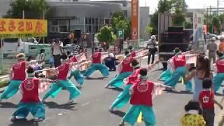 HIKAWA Jeune ~2018斐川だんだんよさこい祭(荘原グリーンタウン)