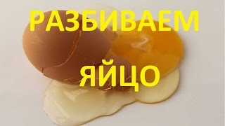 Так разбивается яйцо замедленная съемка