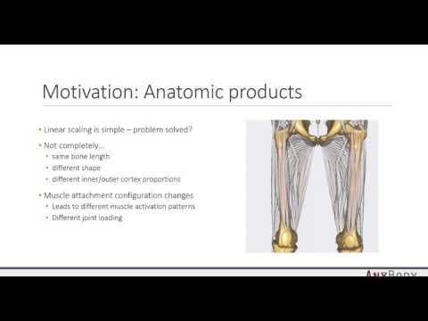 [Webcast] - Personalize your musculoskeletal models based on medical image data