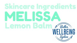 Skincare Ingredients: Melissa | Lemon Balm
