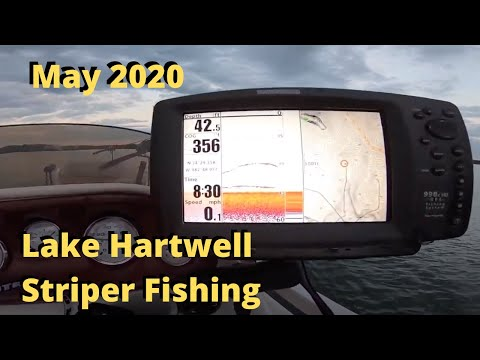 Striper Fishing On Lake Hartwell May 2020 - Post Covid-19 Restrictions