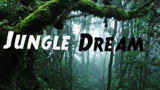 Manoup  - Jungle Dream