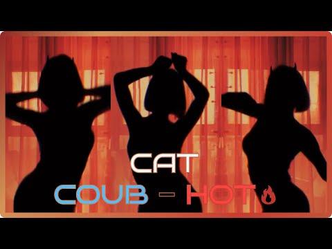 Cat Coub - Hot / Горячее на Coub