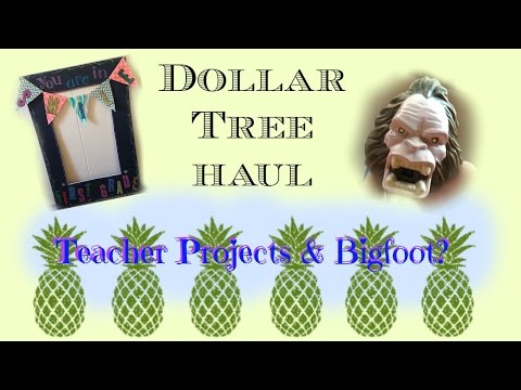 Dollar Tree Haul- Late August 2015