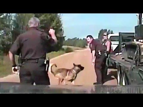 Dashcam: Man Sues Deputy After Police Dog Bites His Head