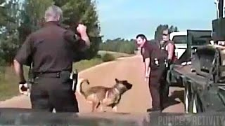 Dashcam: Man Sues Deputy After Police Dog Bites His Head