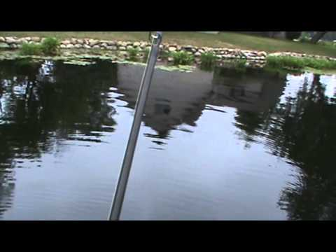 Bass fishing at the portage chain 7 27 2013 youtube for Portage lakes fishing