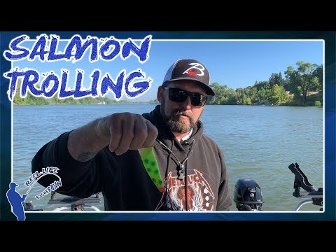 SACRAMENTO RIVER (METRO AREA) SALMON TROLLING | BRAD'S CUT PLUGS | HOW TO