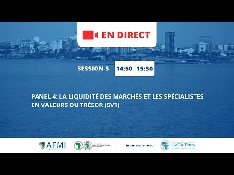 Atelier AFMI/BAD 2017 / Session 5 : panel sur la liquidité des marchés et les SVT