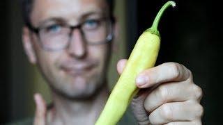 Острый перец польза и вред. Помогает ли перец похудеть?