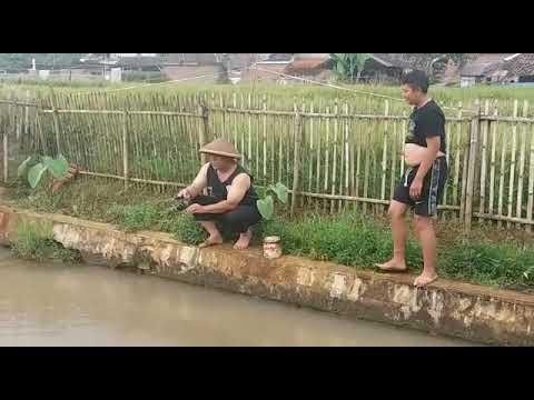 Kolot  bedegong jeung budak baong