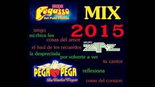 pega mix zaaz 2015