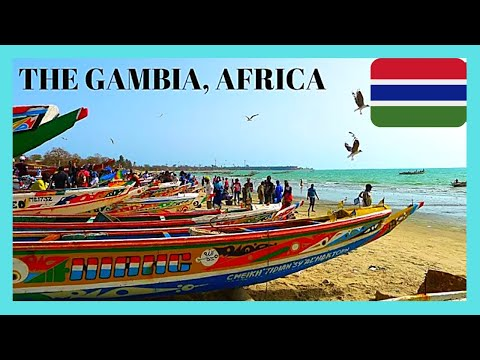 THE GAMBIA: Awesome Traditional Fishing 🦈🐟 Village Of Tanji (Africa)