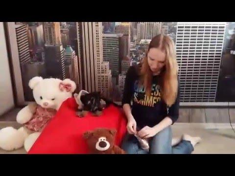 Йорк Смоки и новые ботинки с Алиэкспрессаиз YouTube · Длительность: 5 мин24 с  · Просмотров: 666 · отправлено: 15.02.2016 · кем отправлено: Юлия Кудашева