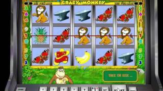4К принесла бонус игра на Crazy Monkey