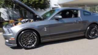 2014 SHELBY GT500 COBRA GRAY BLACK STRIPE LIMITED PRODUCTION