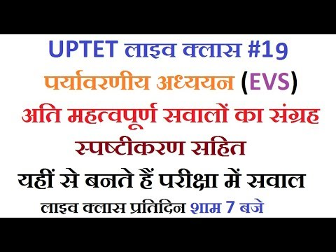 #UPTETLiveClass 19 |EVS Most important MCQs With Explanation |Electronic  Study|