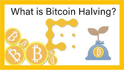 What is the Bitcoin Halving? CoinDesk Explains