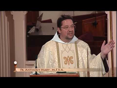 Daily Catholic Mass - 2017-10-14 - Fr. Anthony