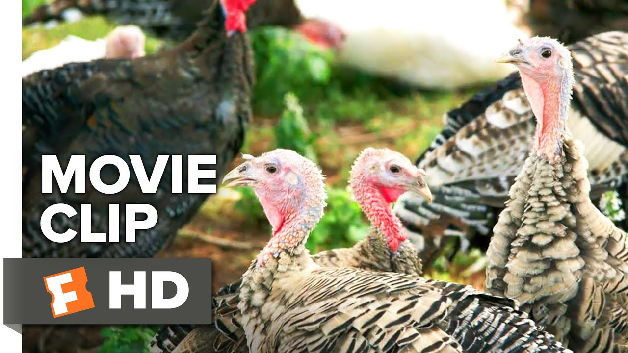 Download Eating Animals Movie Clip - Genetics (2017) | Movieclips Indie
