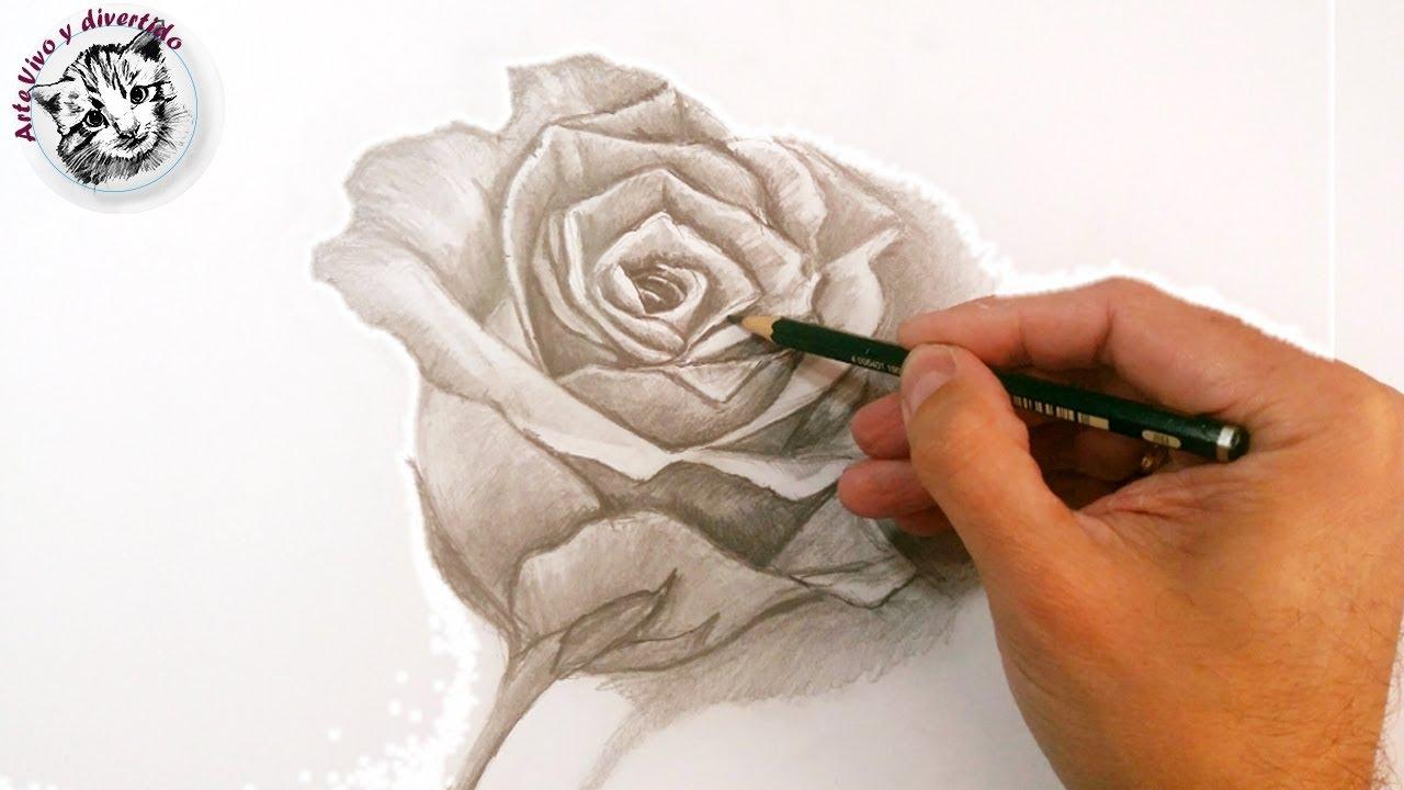 Como Dibujar Una Rosa A Lapiz Paso A Paso Tecnicas De Dibujo A