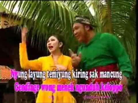 Lagu Banyuwangi.cengkir gading by LAROS (lare songgon)