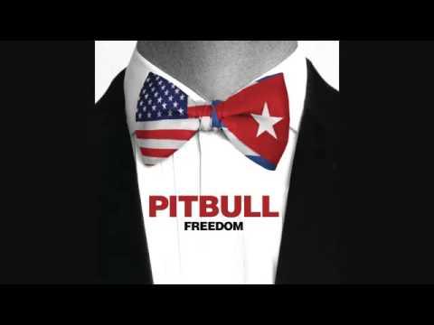 Download Pitbull-Freedom (Audio)