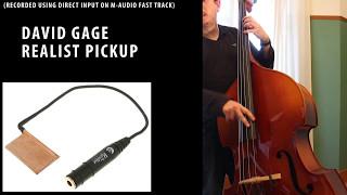 Pickup comparison: David Gage The Realist / K&K Bass Max