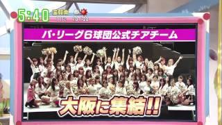 パ・リーグ6球団公式チアチーム 大阪に集結!!