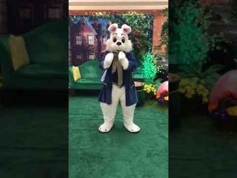 The Entertaining Easter Bunny at Briarwood Mall, Ann Arbor, MI