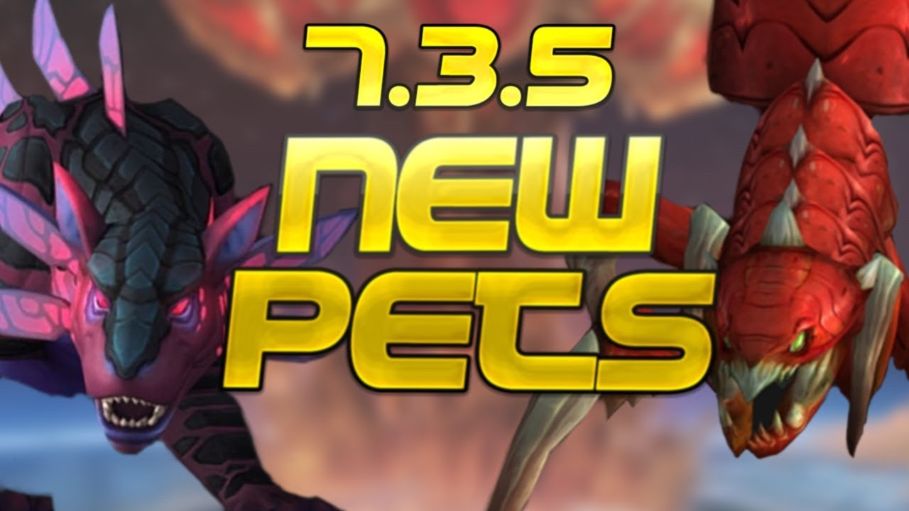 5 New Hunter Pet Tames Patch 7 3 5 Wow Legion Youtube